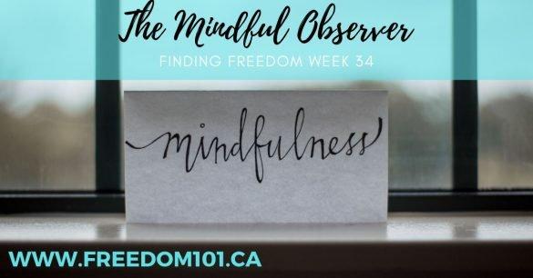 mindful-observer
